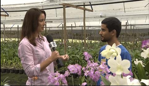 Reportagem do Bahia Rural (TV Bahia - Globo) no Orquidário Bahia