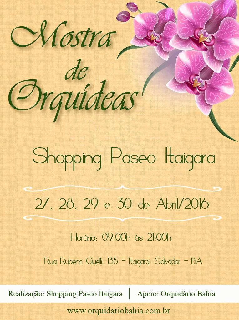 Feira de Orquídeas no Shopping Paseo Itaigara