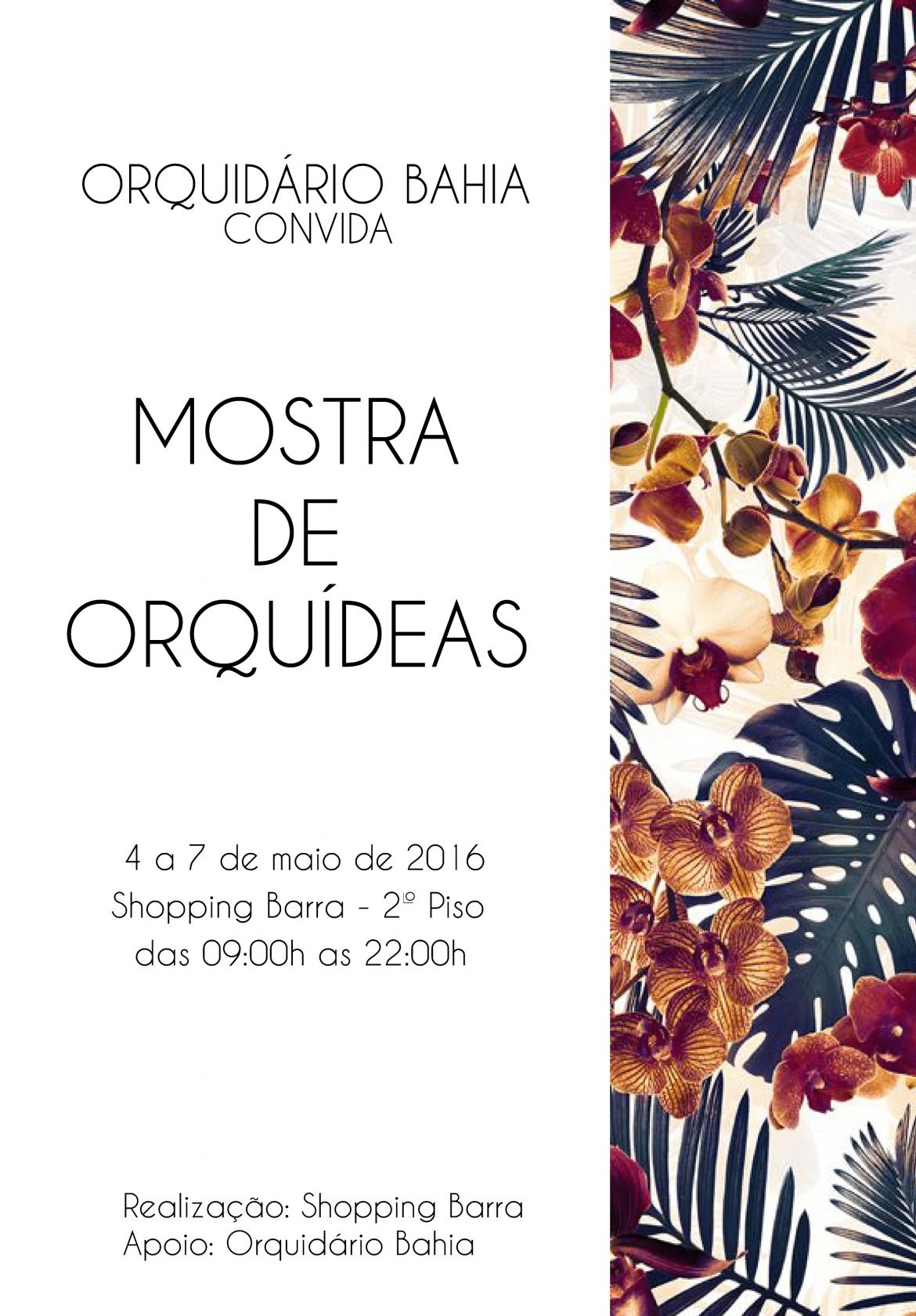 Mostra de Orquídeas no Shopping Barra