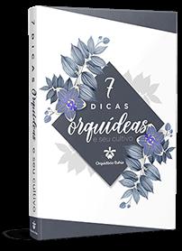 7 Dicas de Orquídeas e seu Cultivo